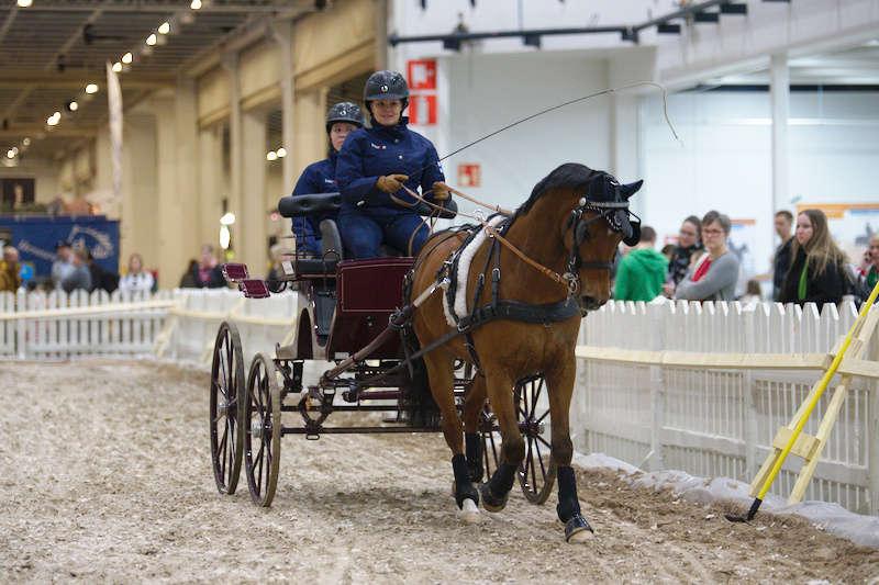 Horse-Fair-valjakkoajo